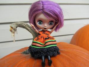 Fall_2012_063